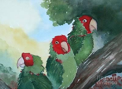 Wild Parrots Of Telegraph Hill Art Print