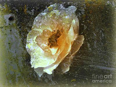 Art Print featuring the digital art Wild Rose by Irina Hays