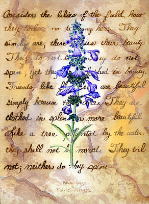 Wild Sage Art Print by Linda Pope