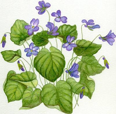 Wild Violets Art Print by Becky Yates
