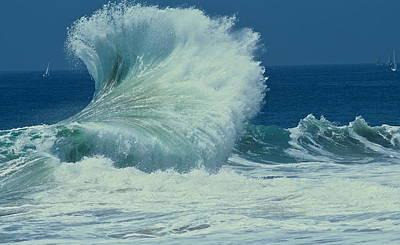 Wild Wave Art Print