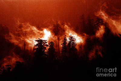 Raging Mixed Media - Wildfire by Mike Nellums