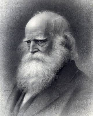 Abolition Photograph - William Cullen Bryant 1794-1878 Was An by Everett