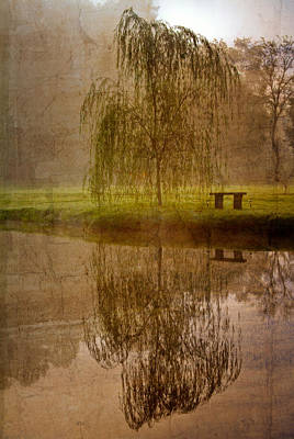 Lake Harris Photograph - Willow On The Pond by Debra and Dave Vanderlaan