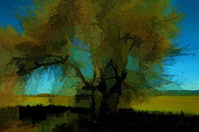 Willow Tree Art Print by Bonnie Bruno
