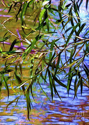 Dappled Light Photograph - Willows At The Pond by Judi Bagwell