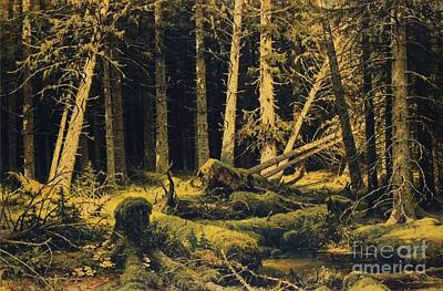 Painting - Wind Fallen Trees by Pg Reproductions