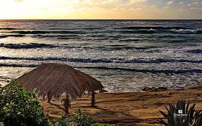 Surf Shack Photograph - Windansea Surf Shack by Russ Harris