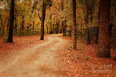 Photograph - Winding Path At Beaver's Bend by Tamyra Ayles