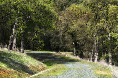 Photograph - Winding River Road by Gary Rose