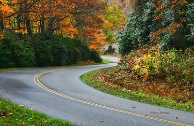 Art Print featuring the photograph Winding Road by Joan Bertucci