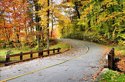 Photograph - Winding Road by Kristin Elmquist