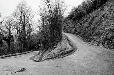 Bare Trees Photograph - Winding Road by Xamah Image