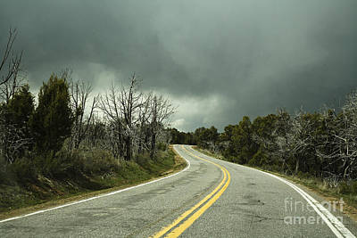 Winding Two Lane Road Art Print by Ned Frisk