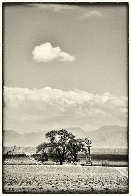 Photograph - Windmill And Tree by David Waldrop