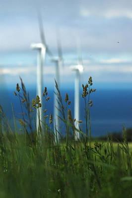Windmills Photograph - Windmills by Sophie  Bouchard
