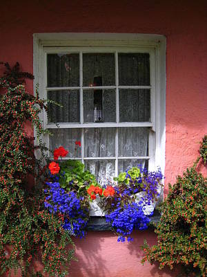 Photograph - Window Box by Bonnie Myszka