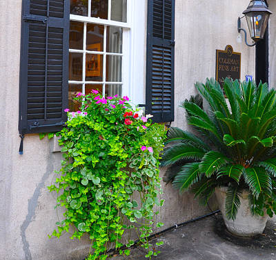Photograph - Window Box Coleman by Lori Kesten