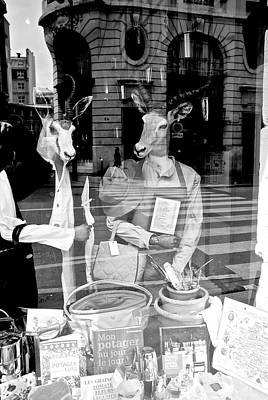 Photograph - Window Display Gone Wild by Eric Tressler