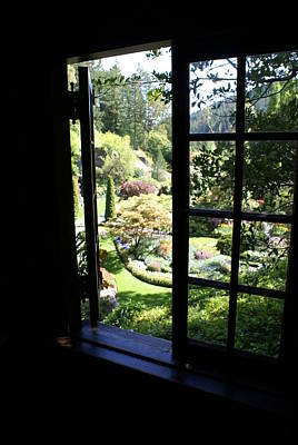 Art Print featuring the photograph Window Garden by Jerry Cahill
