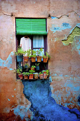 Photograph - Window by Harry Spitz