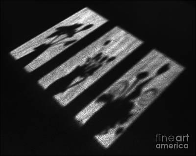 Window Shadows Art Print