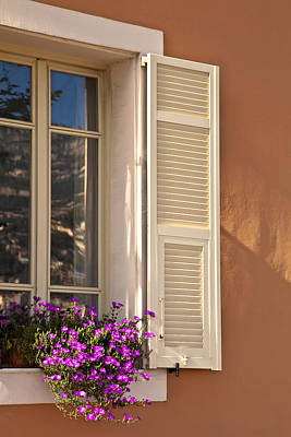 Y120817 Photograph - Window With Shutter And Flowers by Carlos Sanchez Pereyra
