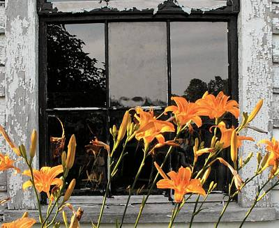Photograph - Windows Lilies In Reflection by William OBrien