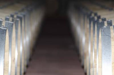Wine Barrel Photograph - Wine Barrels In Line by Mats Silvan
