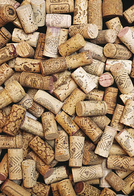 Wine Stopper Photograph - Wine Bottle Corks by Alan Sirulnikoff