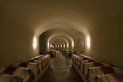 Photograph - Wine Cave-1 by Gary Rose
