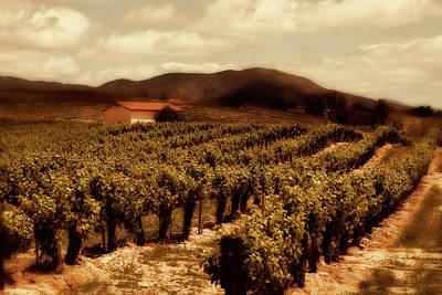 Wine Country Print by Peter Tellone