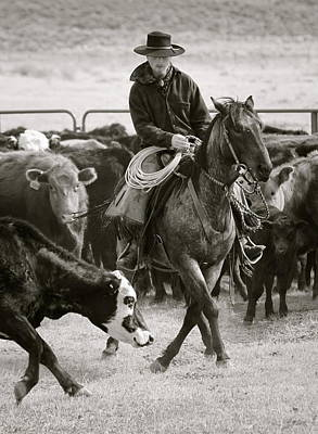Photograph - Wine Cup Cowboy by Diane Bohna