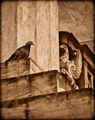 Athens, Greece - Winged Encounter Art Print