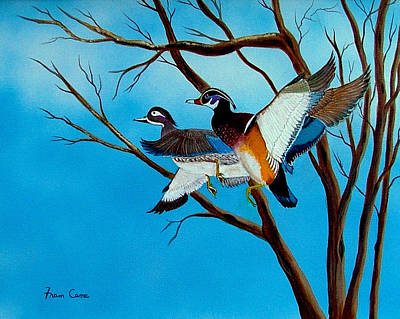 Painting - Wingin'  It by Fram Cama