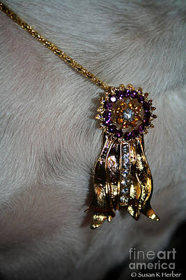 Canine Jewelry Photograph - Winner by Susan Herber