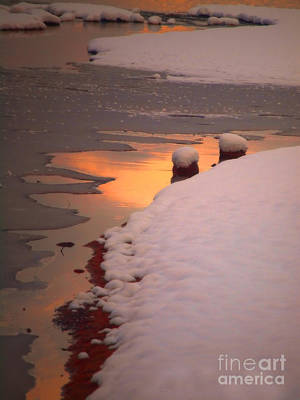 Photograph - Winter Abstract by Tara Turner