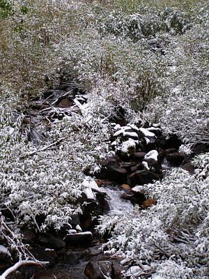 Photograph - Winter Arrives On The Creek by DeeLon Merritt