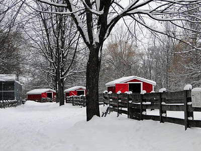 Mixed Media - Winter At The Canatara Farm by Bruce Ritchie
