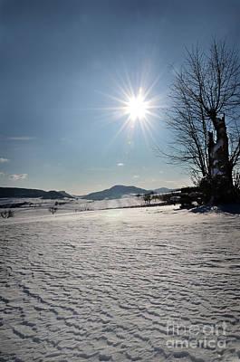 Winter Beauty 3 Art Print
