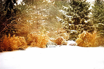 Winter Bench Original by Mary Timman