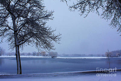 Photograph - Winter Blues by Alyce Taylor