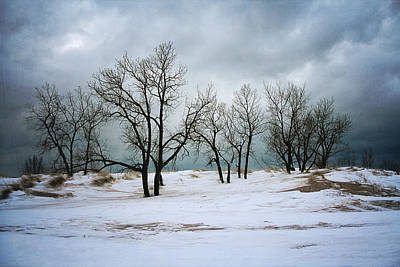 Photograph - Winter Clouds by Laura Kinker