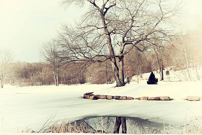 Winter Day In The Park Art Print