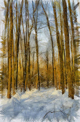 Vintage Chevrolet - Winter forest by Michael Goyberg
