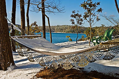 Art Print featuring the photograph Winter Hammock by Susan Leggett