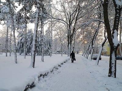 Art Print featuring the photograph Winter In Mako by Anna Ruzsan