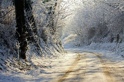 Winter In Small Countryside Road Art Print by © Frédéric Collin