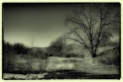 Hdr Photograph - Winter In South Platte Park IIi by David Patterson