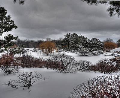Photograph - Winter In The Botanical Garden by David Bearden